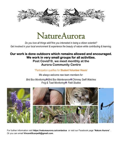 Nature Aurora Flyer 2020-Covid