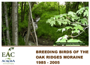 Breeding Birds Oak Ridges cover